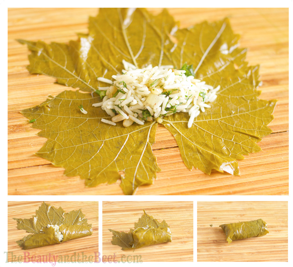 Grape leaf final